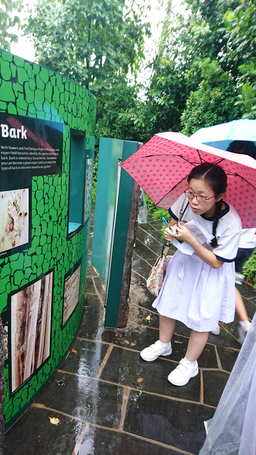 Sec-3-CnME-Learning-about-the-bark-at-Garden-by-the-Bay.jpg