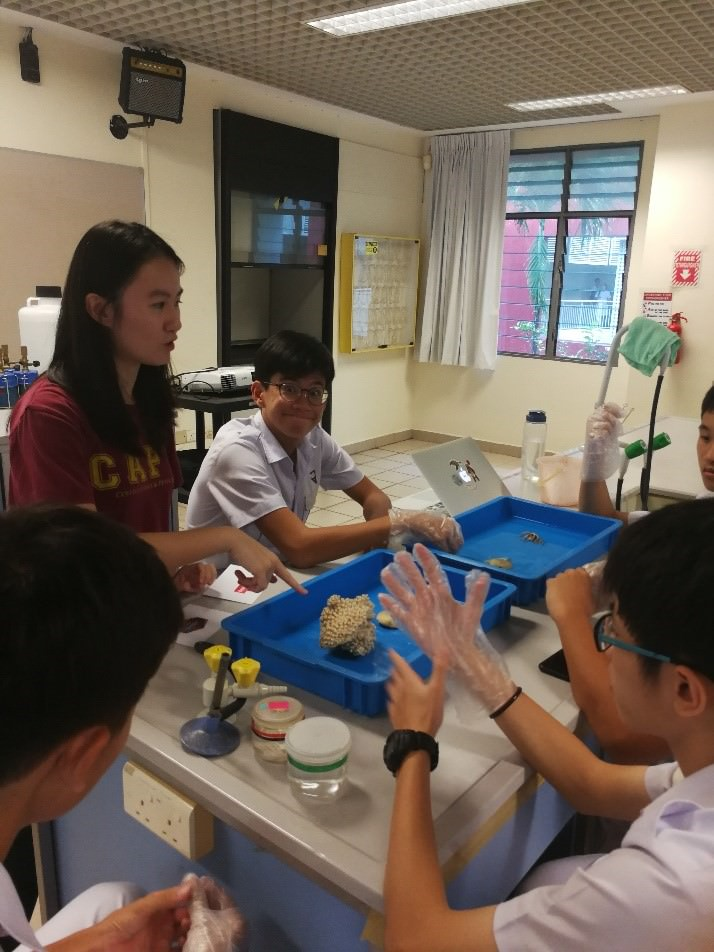 Marine Specimens for Sustainable Environment Education Nan Hua High School 2.jpg