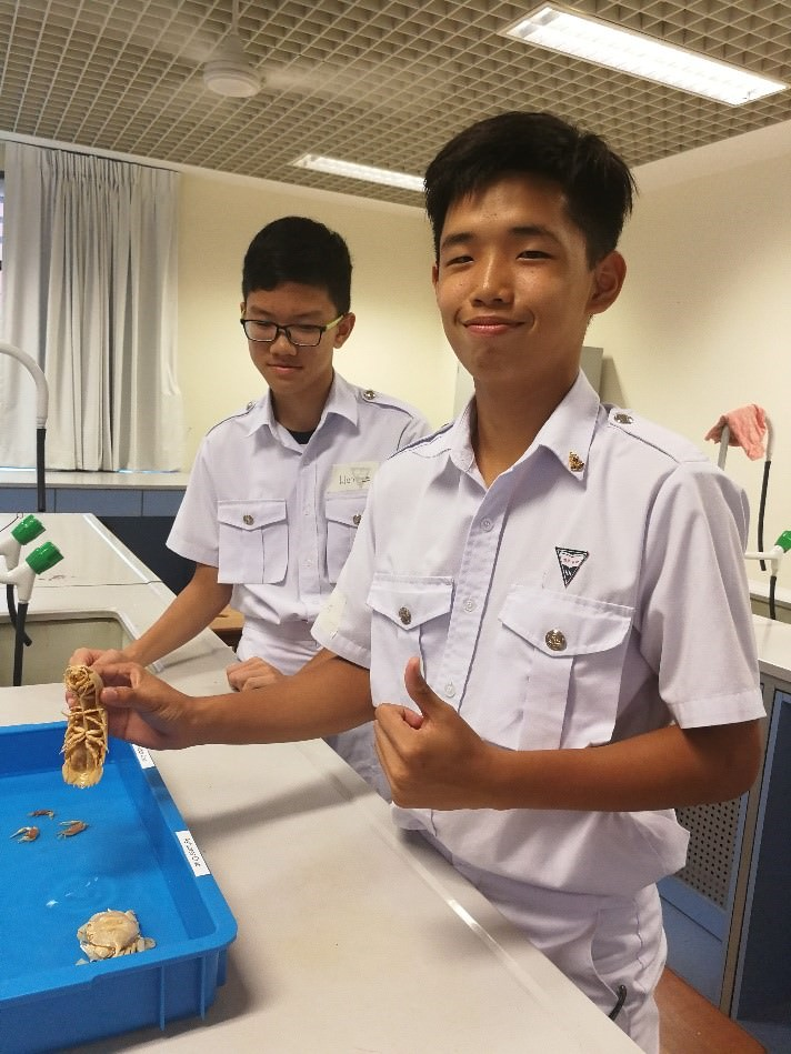 Marine Specimens for Sustainable Environment Education Nan Hua High School.jpg